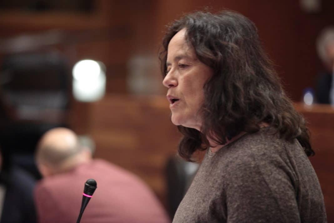 Paula Valero interviniendo en el Pleno