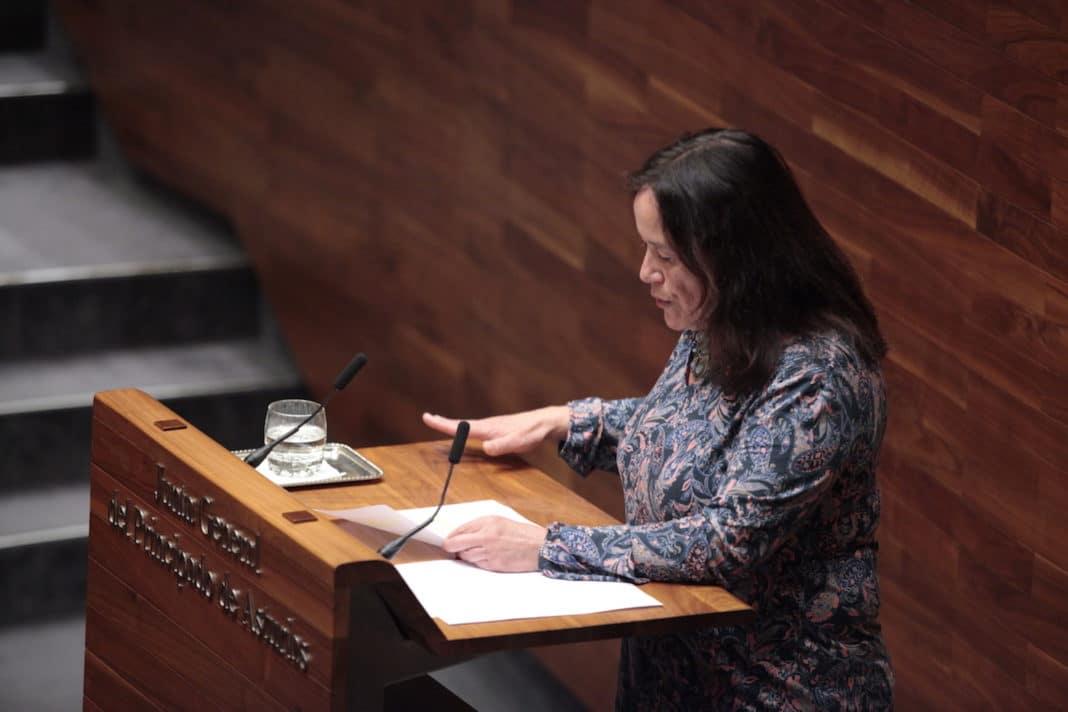 Paula Valero en el Pleno de la Junta General