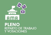 Pleno. Reparto de trabajo y votaciones