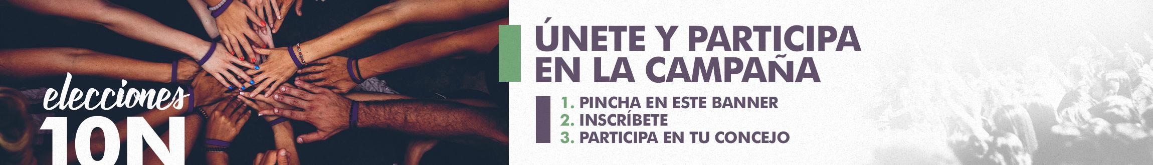 VOLUNTARIADO PARA LA CAMPAÑA ELECTORAL DEL 10N - ASTURIAS