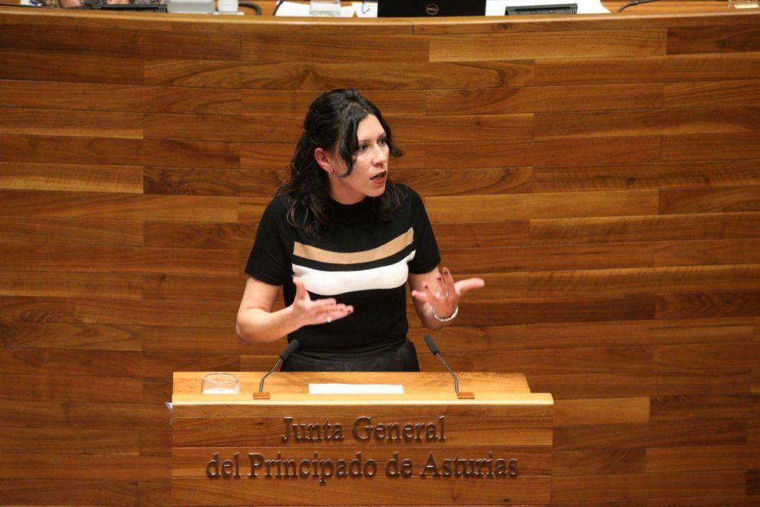 Nuria Rodríguez interviniendo en el Pleno de la Junta del Principado de Asturies
